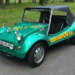 VW Karman Buggy; Foto: P. Bohne